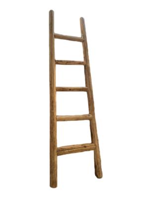 raw-elm-wood-ladder