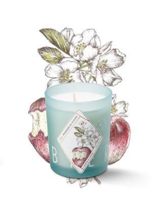 fragranced-candle-pommier